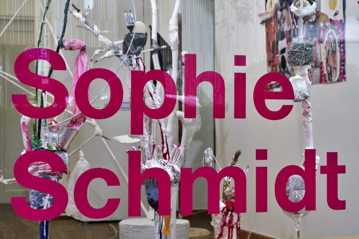 schmidt one last glory of the legs 2020 installview 3
